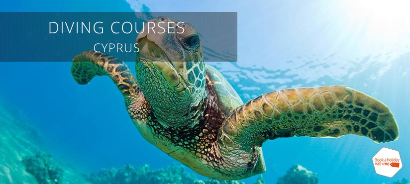 diving-turtle-cyprus